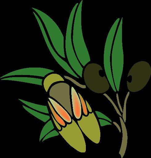 Cikade Cuisine